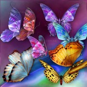 jaguarwoman_butterflies_2_med