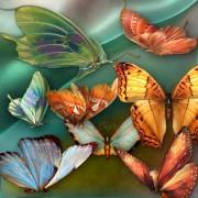 jaguarwoman_butterflies_med